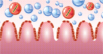 μικρόβια